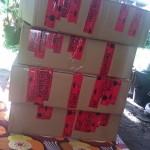 4 Pakete voller PLATZ für uns Nasen!